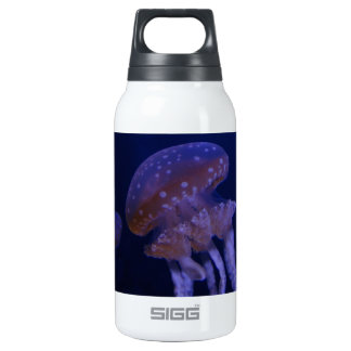 Real photo taken of jelly fish 0.3L insulated SIGG thermos water bottle
