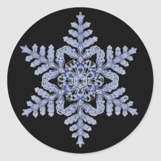 Real Snowflake on Black Classic Round Sticker
