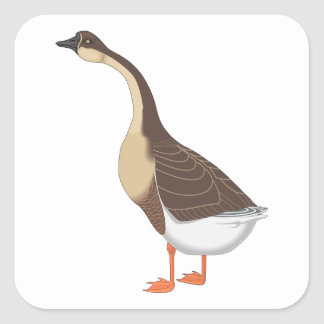 Realistic Goose Square Sticker