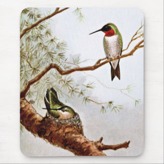 Realistic Ruby-Throated Hummingbird Art Mouse Pad