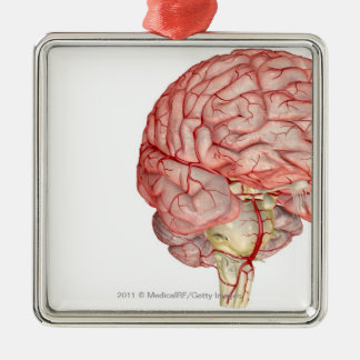 Realitic rendering of the human brain metal ornament