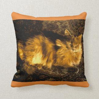 Really Cushion