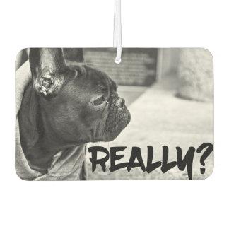Really? Dog Car Air Freshener