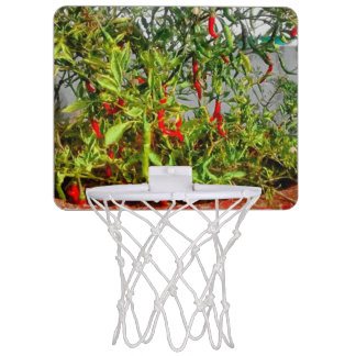 Really hot mini basketball hoop