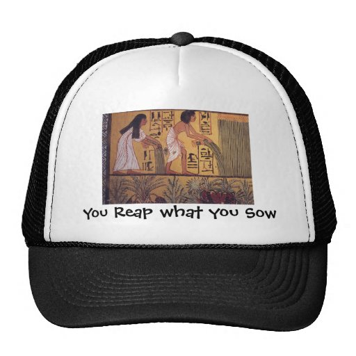 Reap what you Sow hat