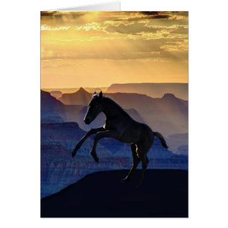 Rearing baby horse and canyons greeting cards