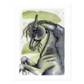 Rearing Black Horse Serpentine Watercolor Wash Post Card