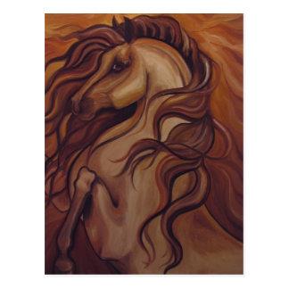 Rearing Spanish Horse Postcard