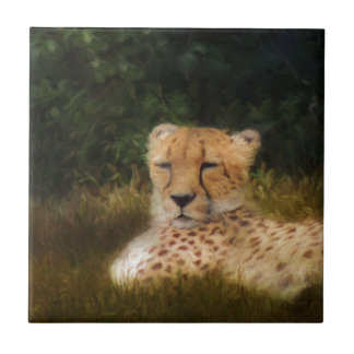 Reclining Cheetah at Fossil Rim Wildlife Center Small Square Tile