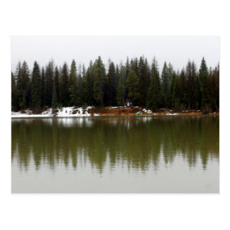 """""""Recluse cabin"""" Postcard"""