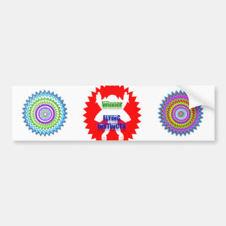 Recognize Excellence : Winner Flying Instincts Bumper Sticker