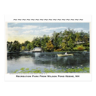 Recreation Park From Wilson Pond ... Postcard