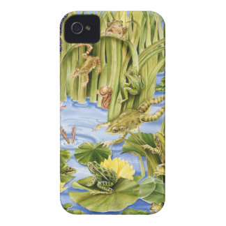 Rectangular Frog iPhone 4 Cover