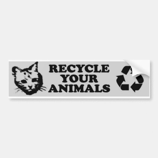 recycle your animals bumper stickers