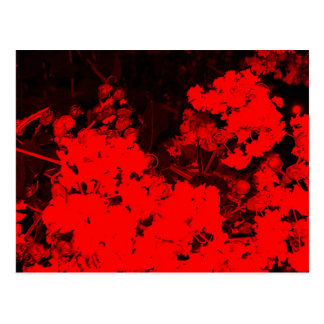Red Abstract Post Card
