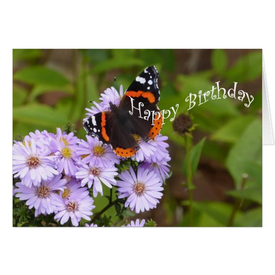 Red Admiral butterfly Card