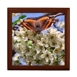 Red Admiral Butterfly Gift Box