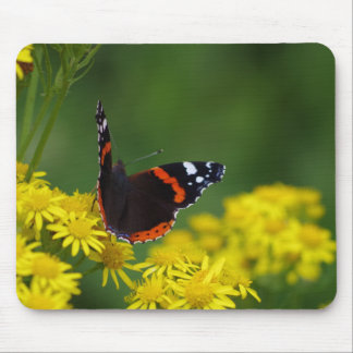 Red Admiral Butterfly Mousepad
