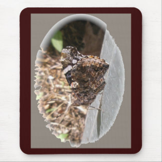 Red Admiral Butterfly Underwings Mousepad