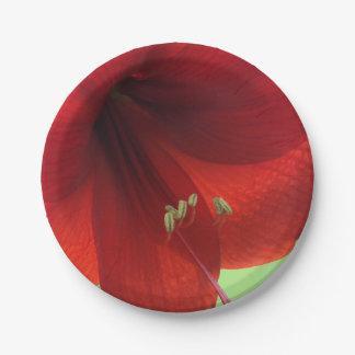 Red Amaryllis Flower Paper Plates