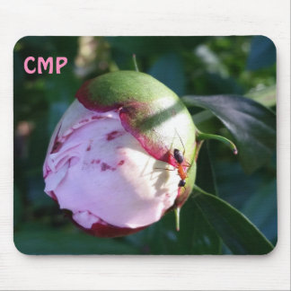 Red and Black Ant on Big Pink Flower Bud Mouse Pad