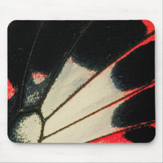 Red and black butterfly close-up mouse pad