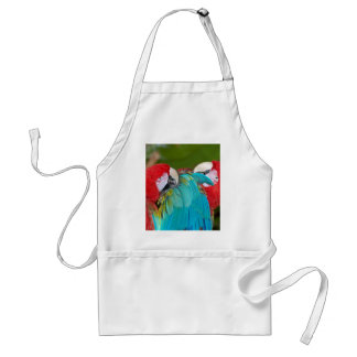 Red and blue macaw parrot print aprons