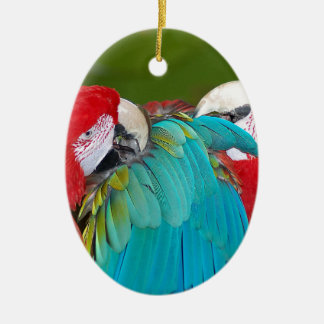 Red and blue macaw parrot print ceramic oval decoration
