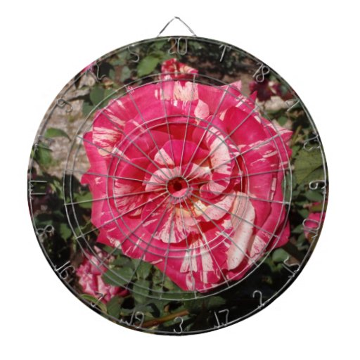 Red and Cream Rose Dartboard With Darts
