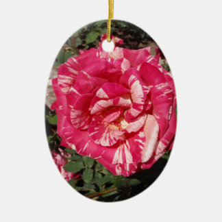 Red and Cream Rose Ornaments