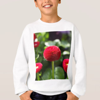 Red and filled cultivated daisies in a garden. sweatshirt