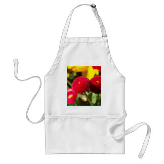 Red and filled cultivated daisies standard apron