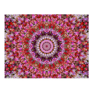 Red and Fuschia Floral Mandala Art Kaleidoscope Postcard