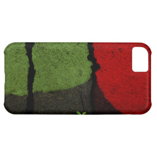 Red and Green Road Paint iPhone 5C Case