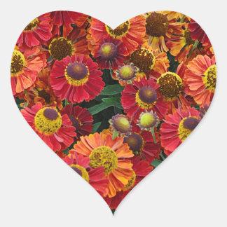 Red and orange helenium flowers heart sticker