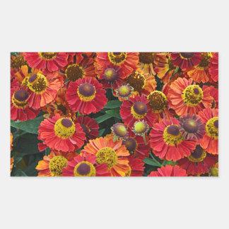 Red and orange helenium flowers rectangular sticker
