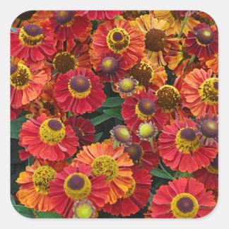Red and orange helenium flowers square sticker