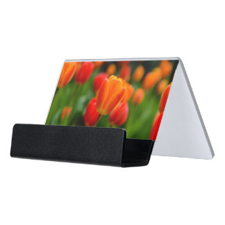 Red and Orange Tulips in the Garden Desk Business Card Holder