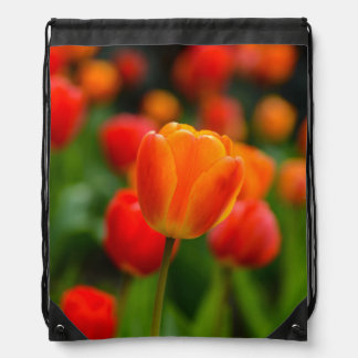Red and Orange Tulips in the Garden Drawstring Bag