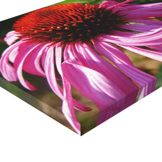 Red and Pink flower canvas Gallery Wrapped Canvas
