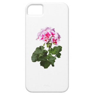 Red And Pink Geranium iPhone 5 Case