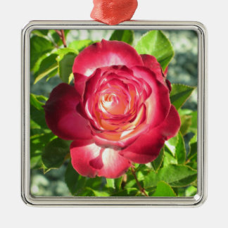 Red and Pink Rose Christmas Ornament