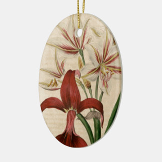 Red and White Amaryllis Flower Ceramic Ornament