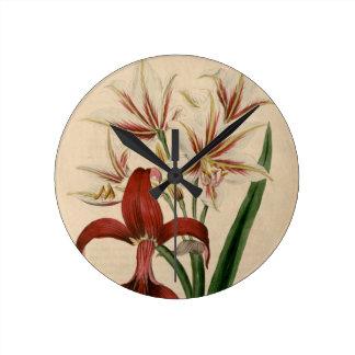 Red and White Amaryllis Flower Round Clock