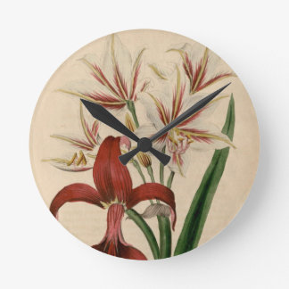 Red and White Amaryllis Flower Wall Clock