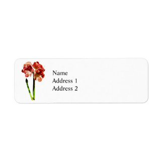 Red and White Amaryllis With Bud Return Address Label