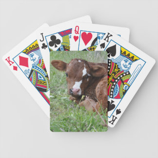 Red and white calf poker deck
