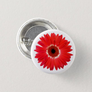 Red and White Multicolor Gerbera Daisy Flower 3 Cm Round Badge