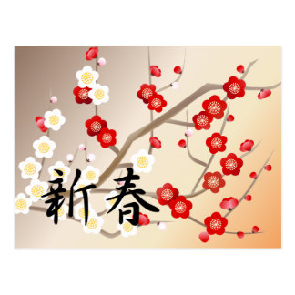 Red and White Plum Flowers Greeting Postcard