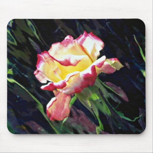 Red and white rose and buds, incandescent water gl mouse pads